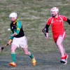 SENIOR HURLING VERSUS BALLELA