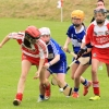 National Camogie Feilé 2