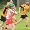 National Camogie Feilé 3