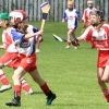 National Camogie Feilé 4