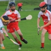 Ballyvarley V Leitriom U-12 Hurling